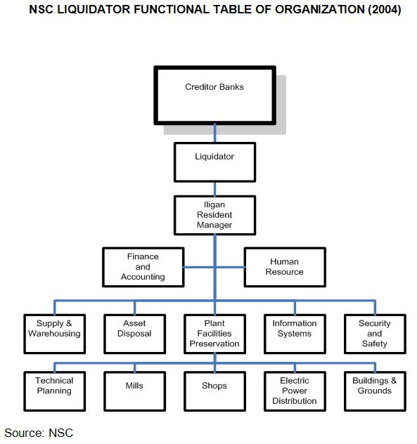 NSC Liquidator Functional Table of Organization (2004)