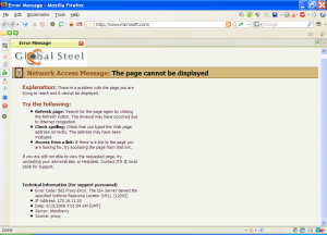 The Error Page